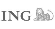 ING - US Financial Services Group