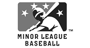 David Wright Minor League Baseball (MiLB)