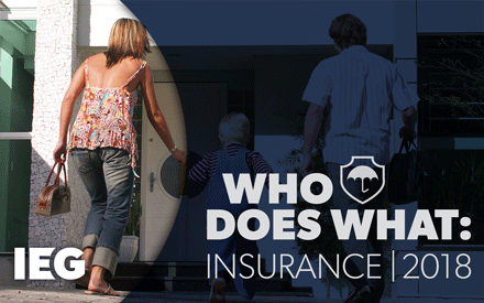 Who Does What: Insurance (2018)